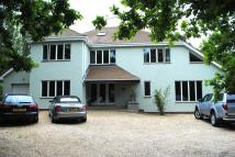 5 bed Detached home in Ashlake Copse Road, PO33