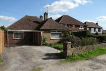 Detached Bungalow in HORSHAM