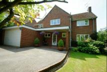 Detached property in MANNINGS HEATH