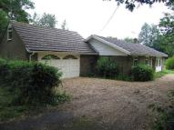 3 bedroom Bungalow to rent in Homelands, Cowfold