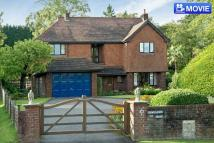 Detached house in RUDGWICK