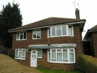 Flat in Bush Close, Toddington
