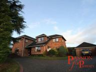 Detached property to rent in Green Bank, Chester