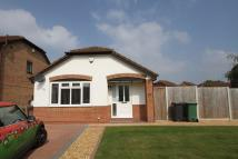 2 bed Detached Bungalow to rent in Shannon Close, Saltney...