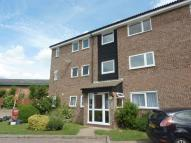 Studio apartment in Coniston, Southend-On-Sea