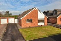 Detached Bungalow for sale in Holford Road, Durleigh...