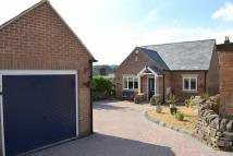3 bed Detached Bungalow in Charnwood Avenue, Belper...