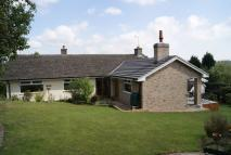 5 bedroom Detached Bungalow in Ashbourne Road...