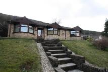 new development for sale in The Pines, Abertillery