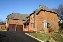 5 bed Detached home for sale in farm road, Nantyglo