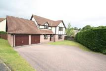 4 bed Detached house for sale in Harford Gardens, Sirhowy...
