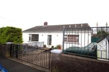2 bed Bungalow for sale in Mount Pleasant...