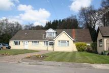 Bungalow for sale in Waterloo Place, Machen