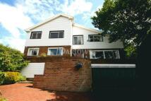 Detached property for sale in The Oak Tree, Heol Fawr...