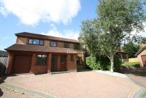 Detached house for sale in Clos-y-Broch, Thornhill...