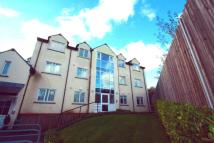 Flat in Caedelyn Court...