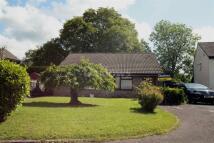 2 bedroom semi detached home in Bron Felen, Thornhill...