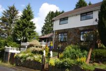 3 bedroom semi detached home for sale in Llwyn Onn Houses...