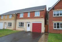 4 bed Detached property for sale in Coed Celynen Drive...