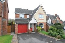 Detached home in Bethesda Close, newport