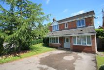 The Paddocks Detached house for sale
