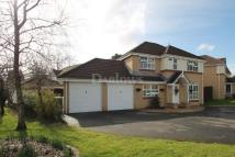 Detached home for sale in Hastings Crescent...