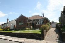 Bungalow for sale in Lynton Terrace...