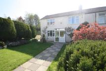 semi detached home in Penygraig Rd, Tonypandy