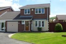 Dinam Park Detached house for sale
