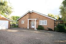 Detached home for sale in Lambley Lane...