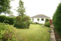 Bungalow for sale in Parkdale Road...