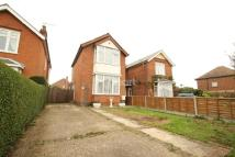 3 bedroom Detached house for sale in King Harold Road, Lexden