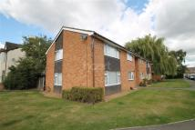 Flat to rent in Alliance Court