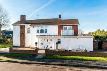 Detached property to rent in Pine Wood TW16