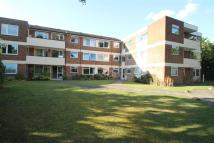 1 bed Flat in Warren Road