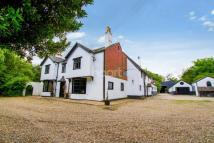 Detached property for sale in Bambers Green
