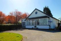 Bungalow for sale in Uxbridge Road