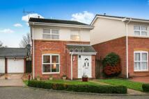 3 bedroom Detached home in Darley Heights, Wigmore