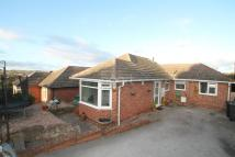 Bungalow for sale in Darlton Drive, Arnold