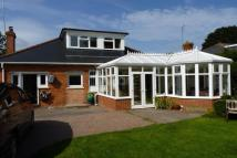 Bungalow to rent in Kingston Road, Taunton