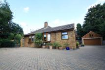 Bungalow for sale in Lime Kiln Lane, Thetford