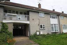 1 bed Flat in Basildon