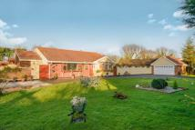 4 bed Bungalow for sale in Basildon