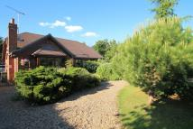 Bungalow for sale in Bowers gifford