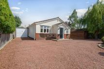 Bungalow for sale in Stanford Le Hope