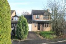 Detached house for sale in Borehamwood