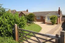 Bungalow for sale in Sturton Road, Saxilby...