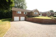 4 bed Bungalow in Hall Drive...
