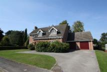 Detached home for sale in Westminster Drive