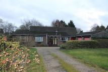 Bungalow for sale in Anglesey Place...